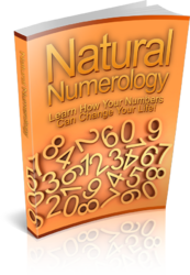 Natural Numerology