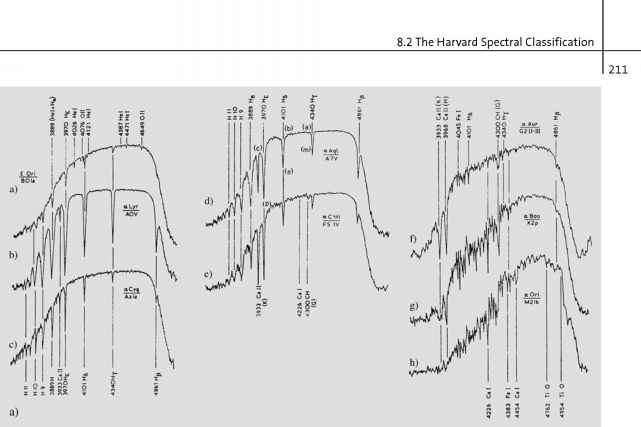 Optical Spectra Dwarfs