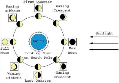 Phases The Moon For Kids